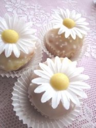cupcakes-summer-love